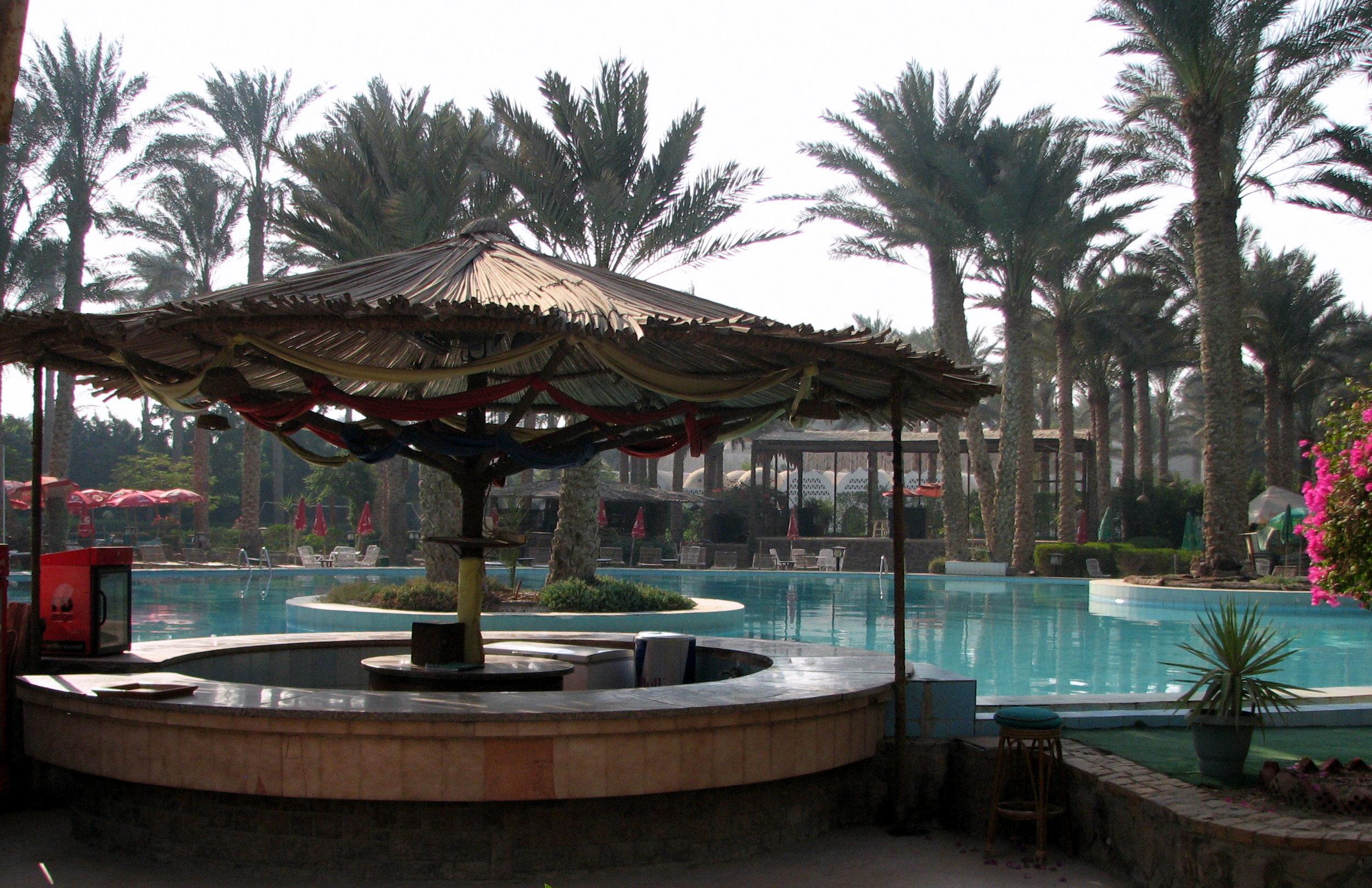 palm club pool.jpg
