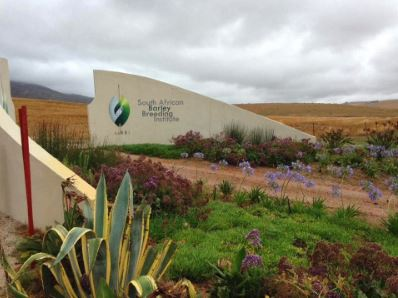 South African Barley Breeding Institute in Caledon. Supported by SABMiller.
