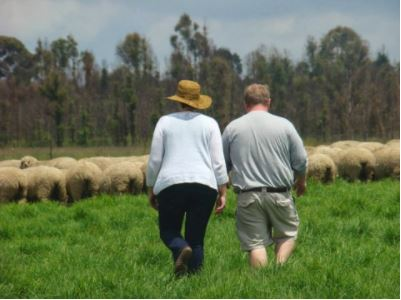 Brent Burchett (Ky Soybean) and I taking a closer look at sheep at farm in Belfast.