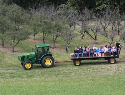 Festival goers take a tour of Browning Orchard
