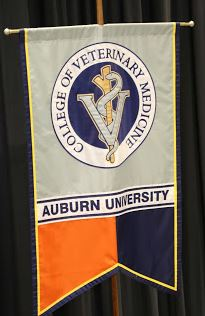 Approximately one-third of the AU Vet Med students are from Kentucky.