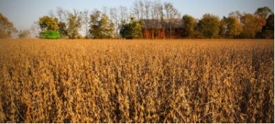 According to the latest U.S. Census of Agriculture, in 2012,the United States had 2.1 million farms –down 4.3 percent from the last agricultural Censusin 2007, continuing a long-term trend of fewer farms.