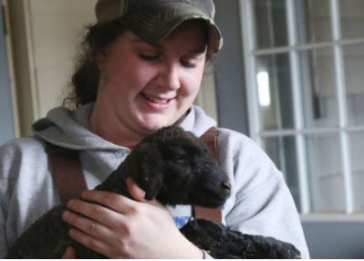 Students enrolled in the agriculture programs at MSU are learning more than just how to care for animals.