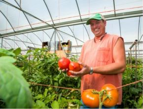 """Brent Cornett shows off some luscious tomatoes """"made"""" by bumblebees in his Laurel County greenhouse. Three hives are in the background. Photo by Stephen Patton"""