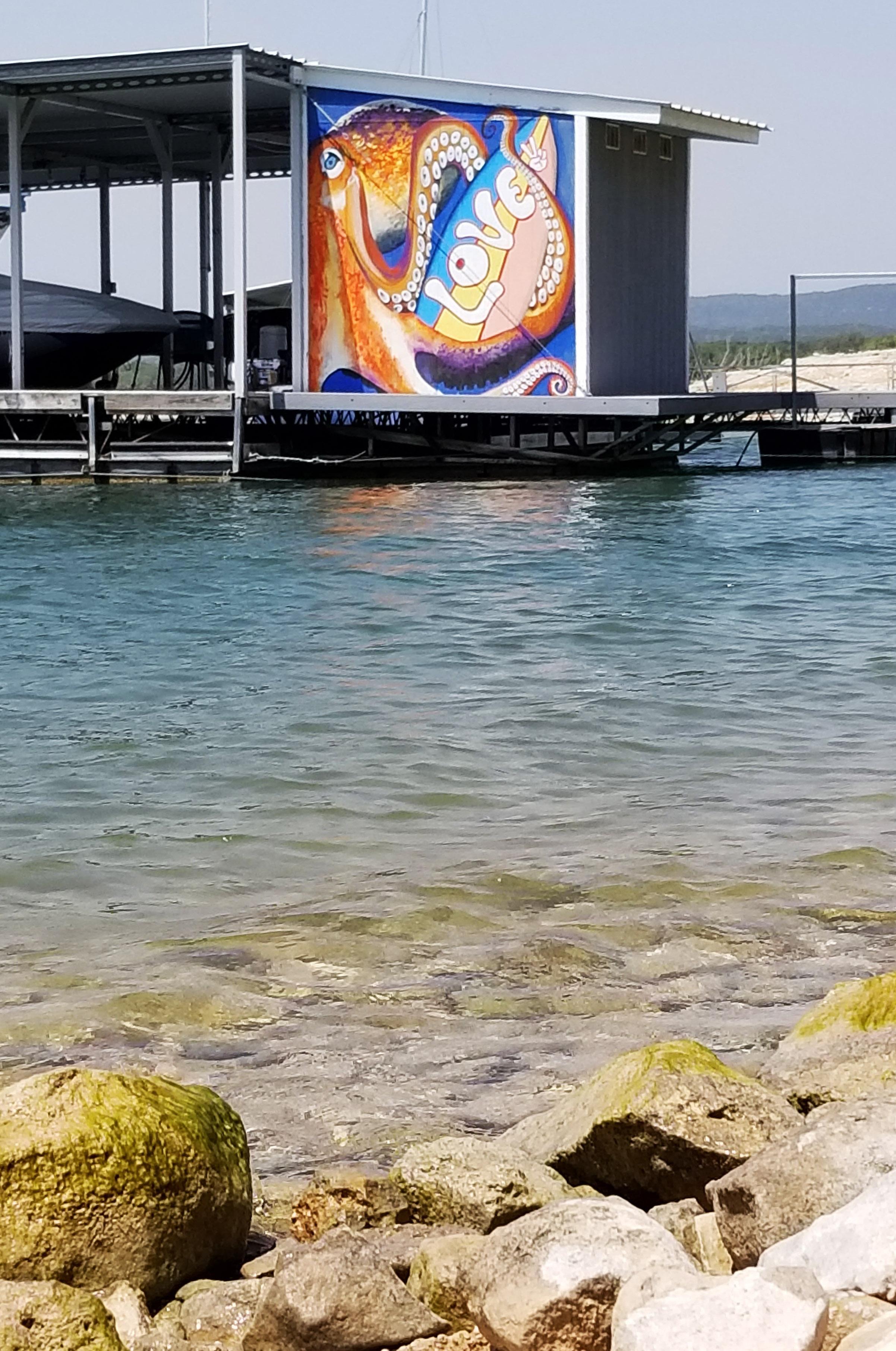 octopus lago vista (2).jpg