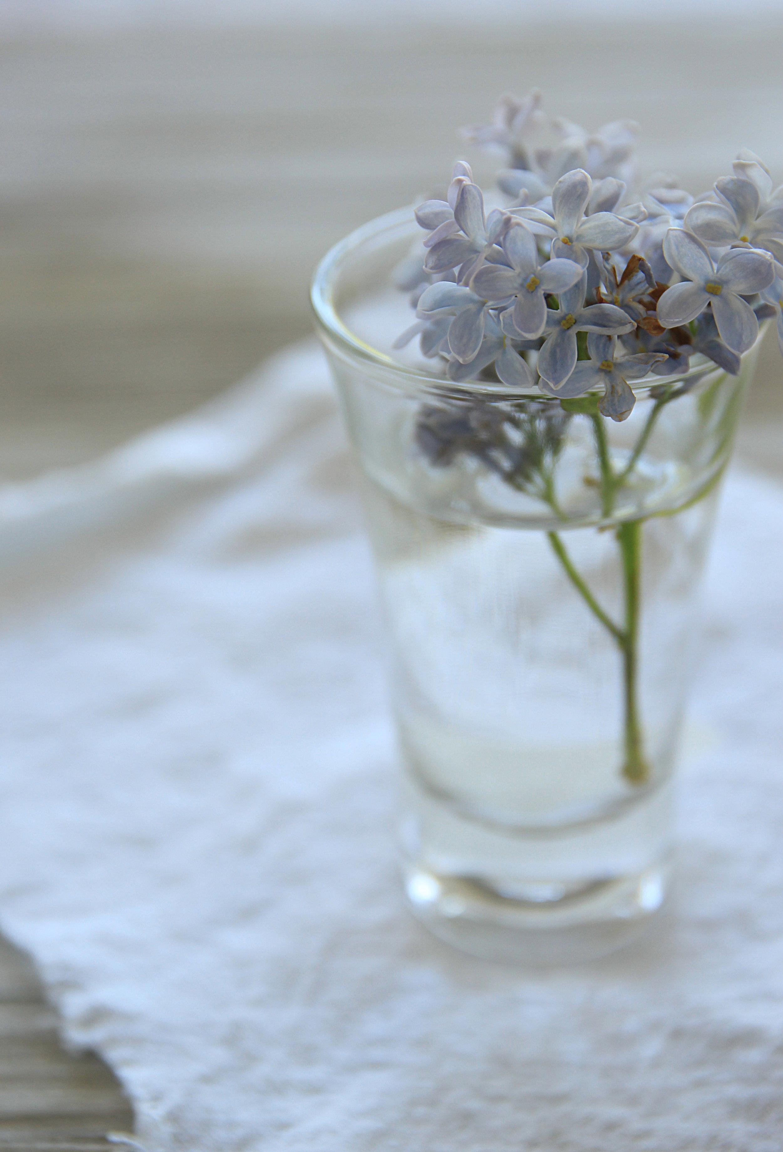 Lilla fiori