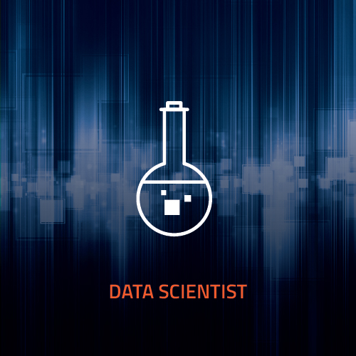 Mareana Careers page graphics_data scientist.jpg