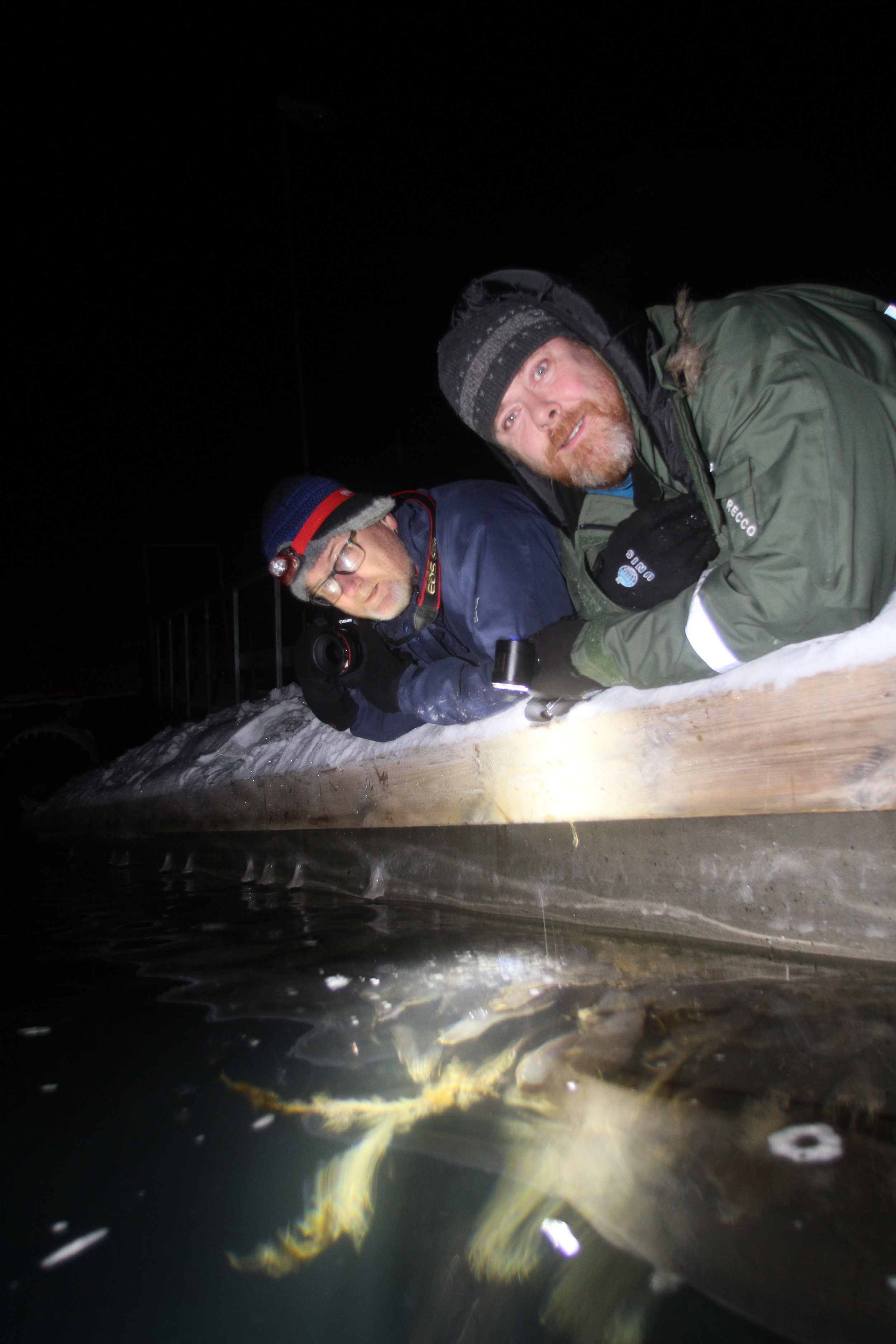 Biology professors Geir Johnsen (left) from NTNU and Jørgen Berge from UiT are leading sensational research in Svalbard. They have arrived at the conclusion that there is teeming life in icy waters, even in the darkest polar night. Photo: Ole Magnus Rapp