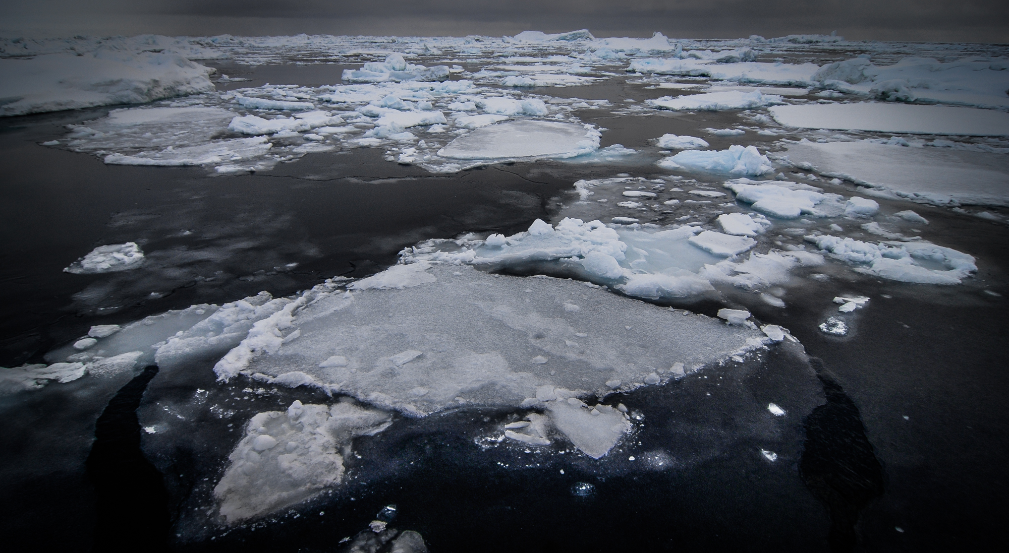 Effects of climate change are obvious in the Arctic. Thinning sea ice and less sea ice.   JONAA©Kristjan Fridriksson