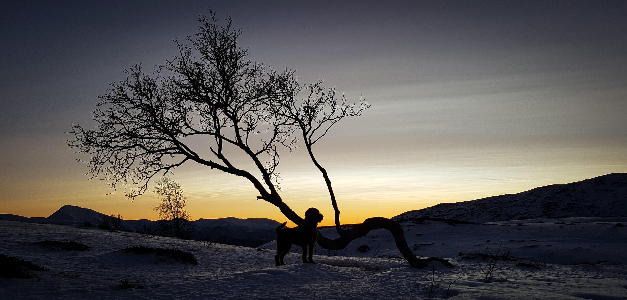 Tromsö@Helge M Markusson-115524.jpg