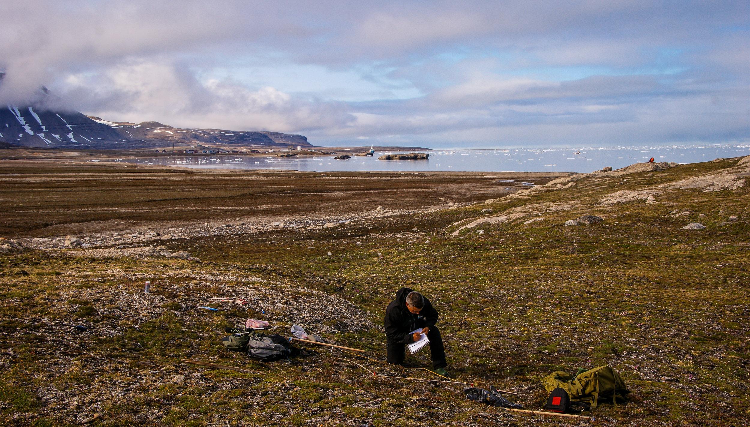 Senior researcher in ecology Jarle W. Bjerke is doing fieldwork on Svalbard. Kongsfjorden and Ny Ålesund in the background.  JONAA©Trond Johnsen