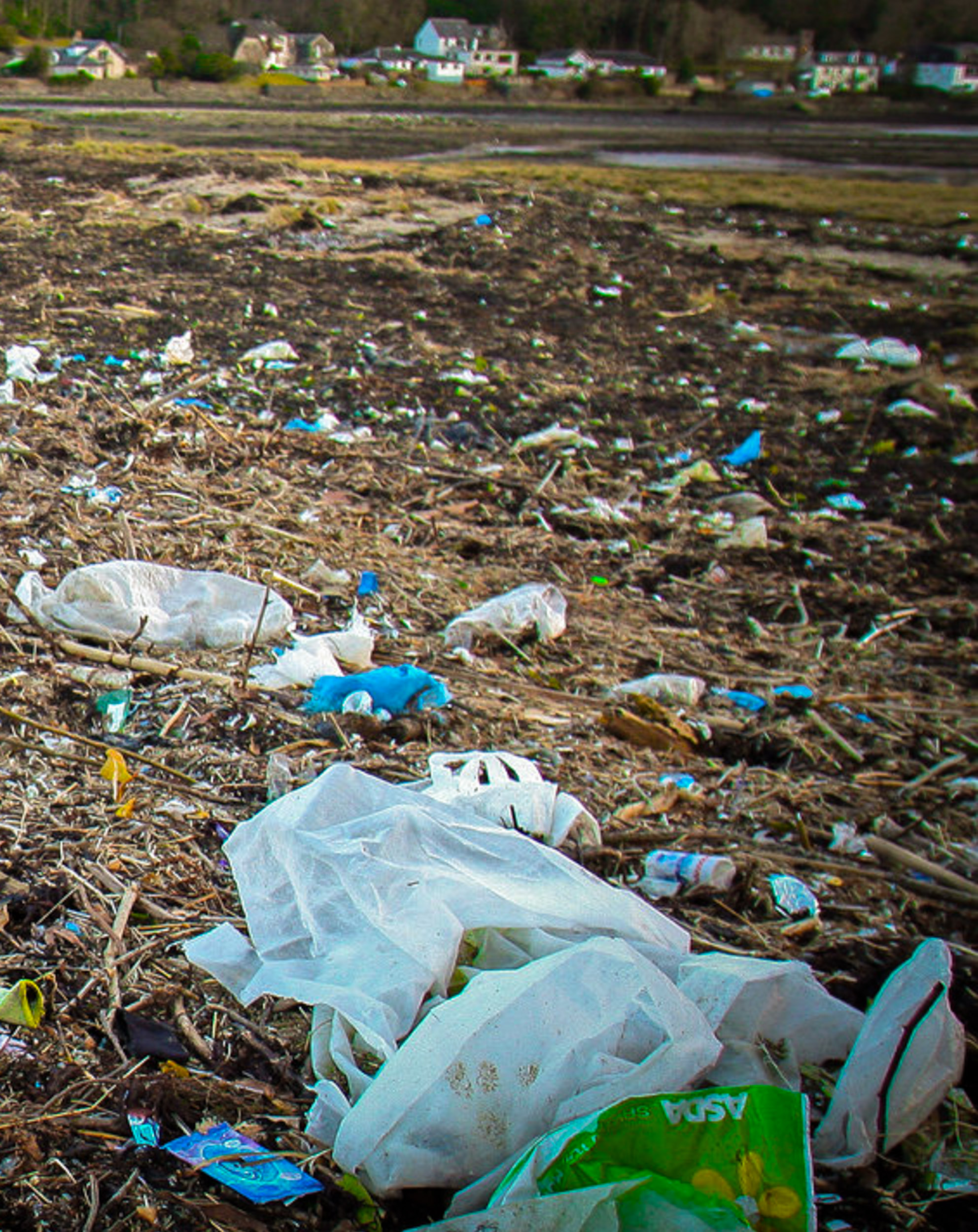 Plastic pollution bacteria JONAA@John Cunningham-1.jpg