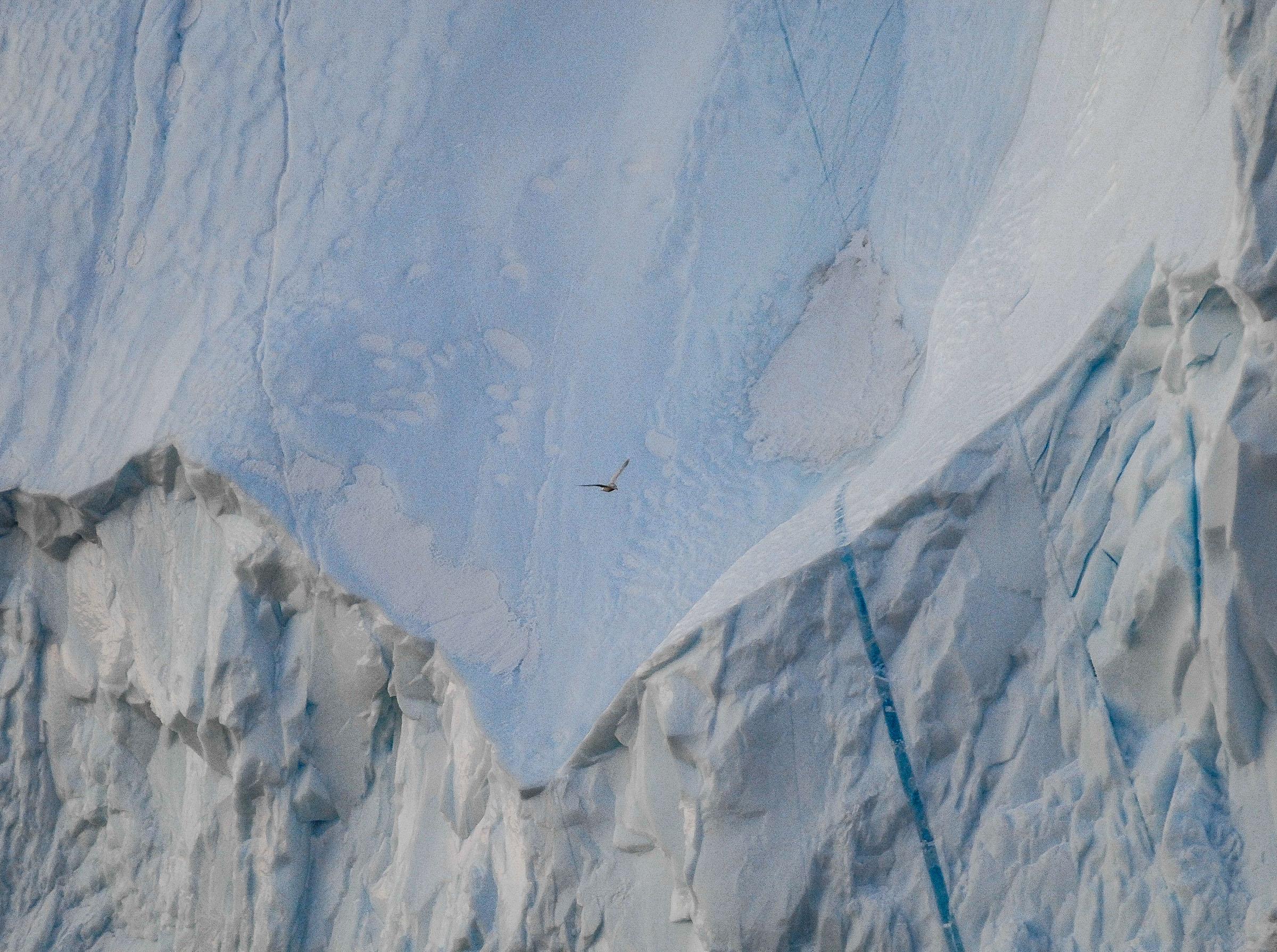 Ilulissat travel JONAA ©Kristjan Fridriksson-0865.jpg