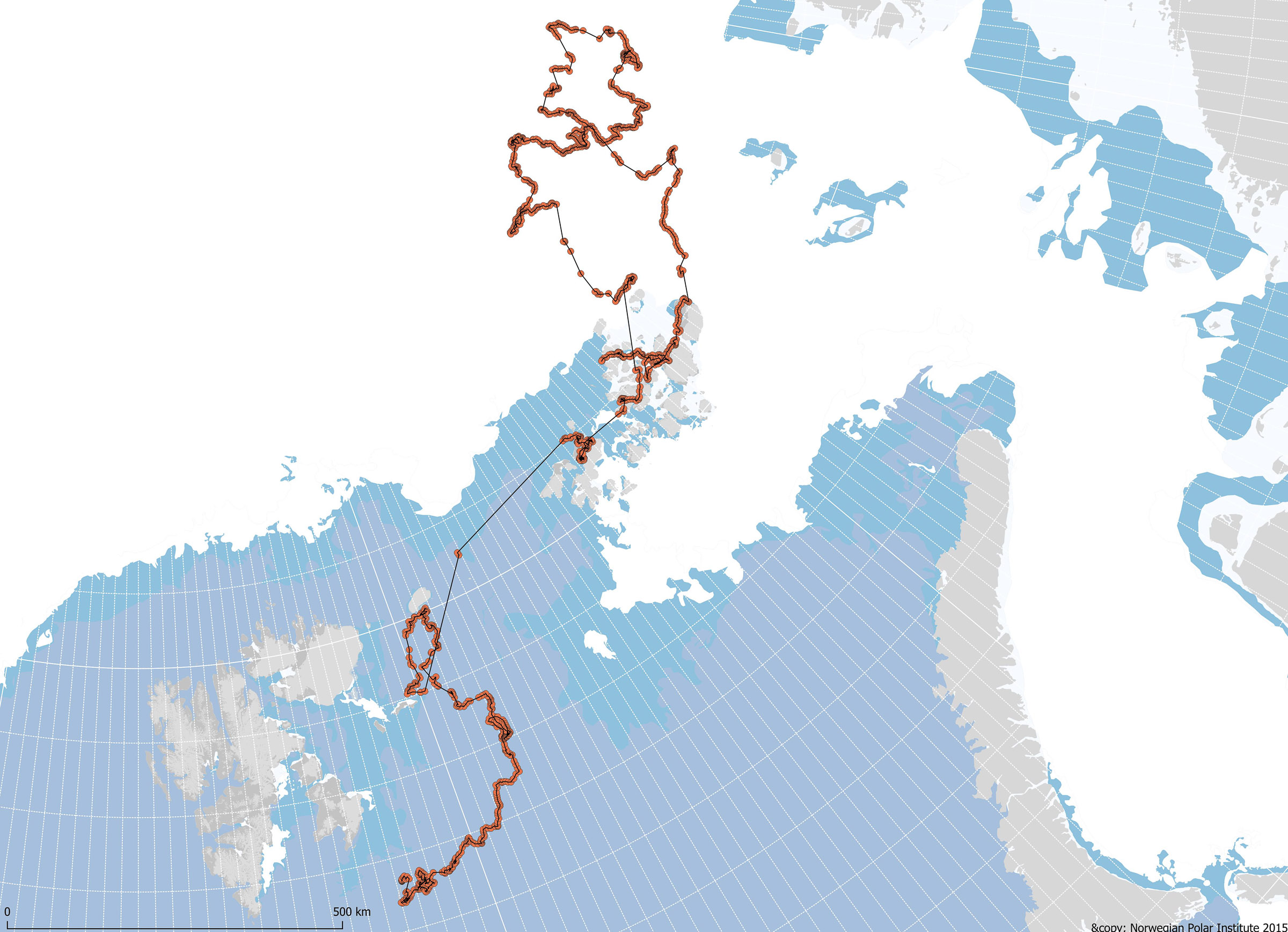 Track of a female polar bear with a GPS satellite collar. The straight lines show swimming. In June 2018 (for which sea ice distribution is shown) she swam more than 400 km during more than a week to get from eastern Svalbard to Franz Josef Land, stopping to rest for 20 hours on some sea ice.