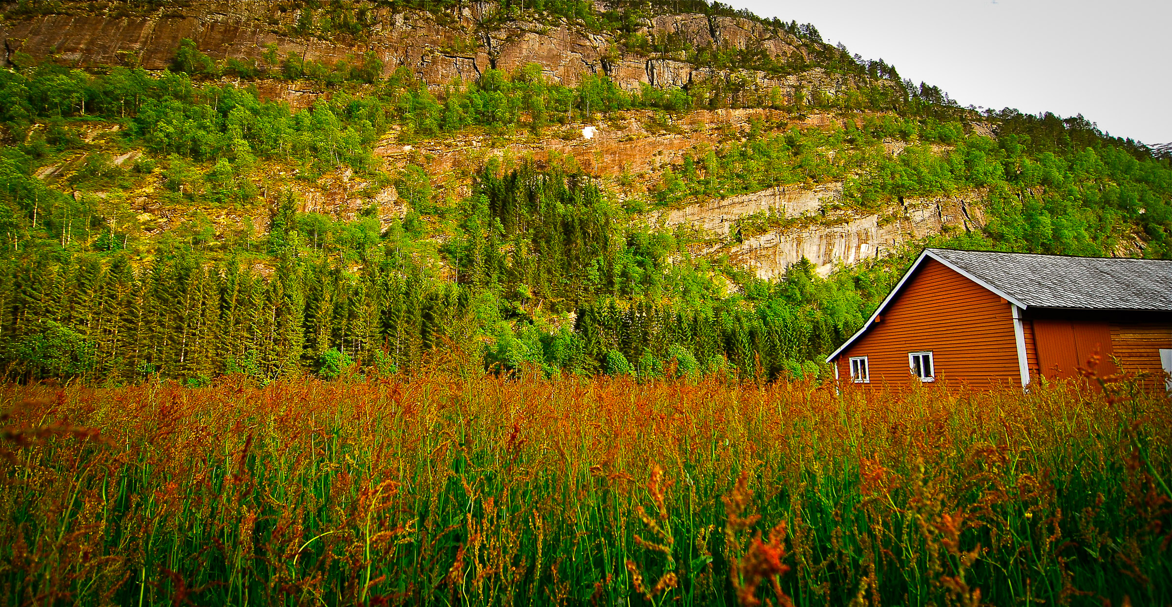 Nothing matches the colours of nature.  Photographed in Modalen, Norway.  JONAA@Kristjan Fridriksson