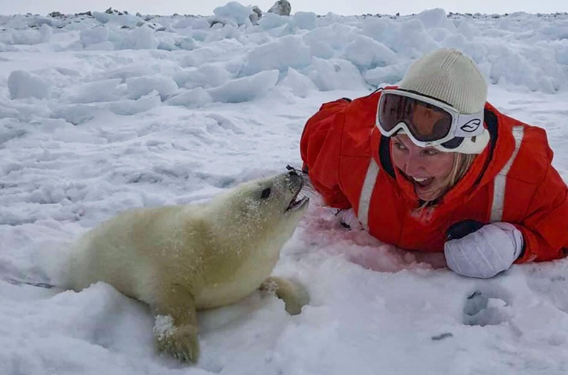 Intro Sealtourism JONAA @Andrea King-2.jpg
