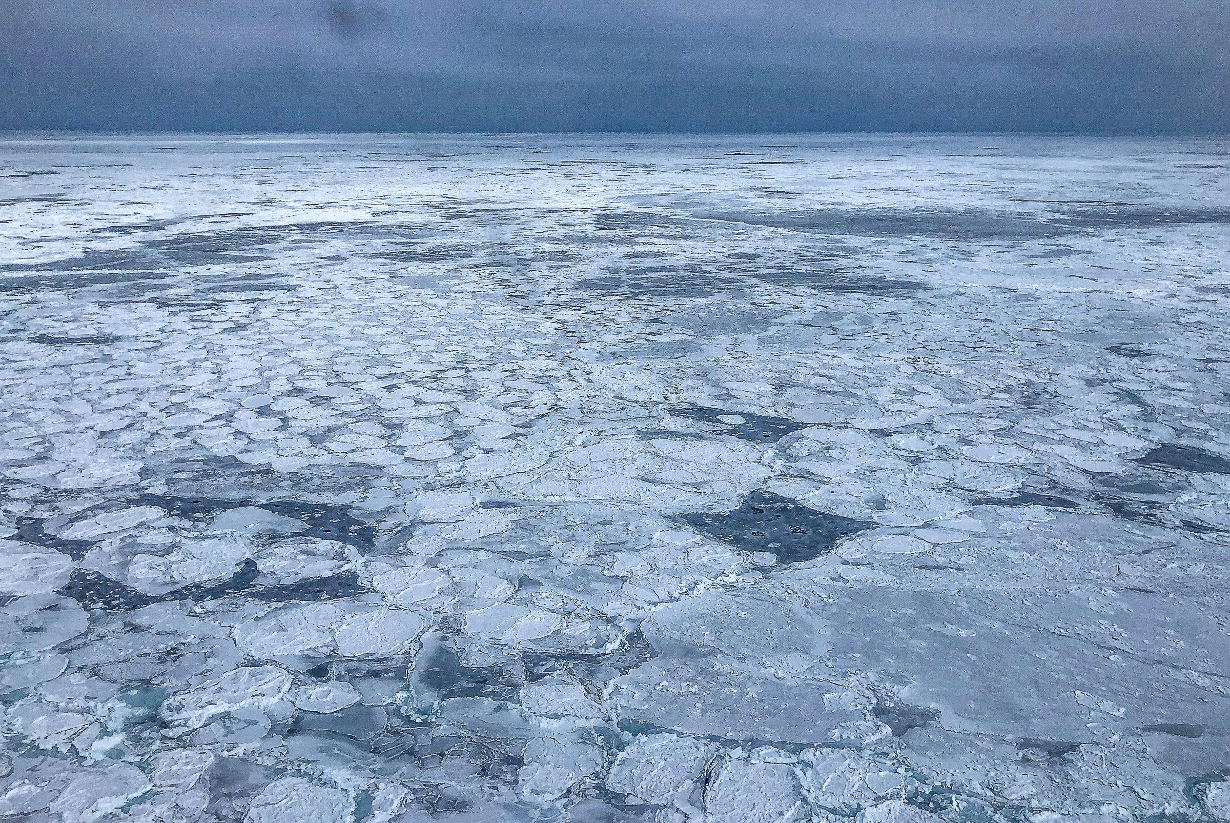 3 SealTourism Canada JONAA@Andrea King-6050.jpg