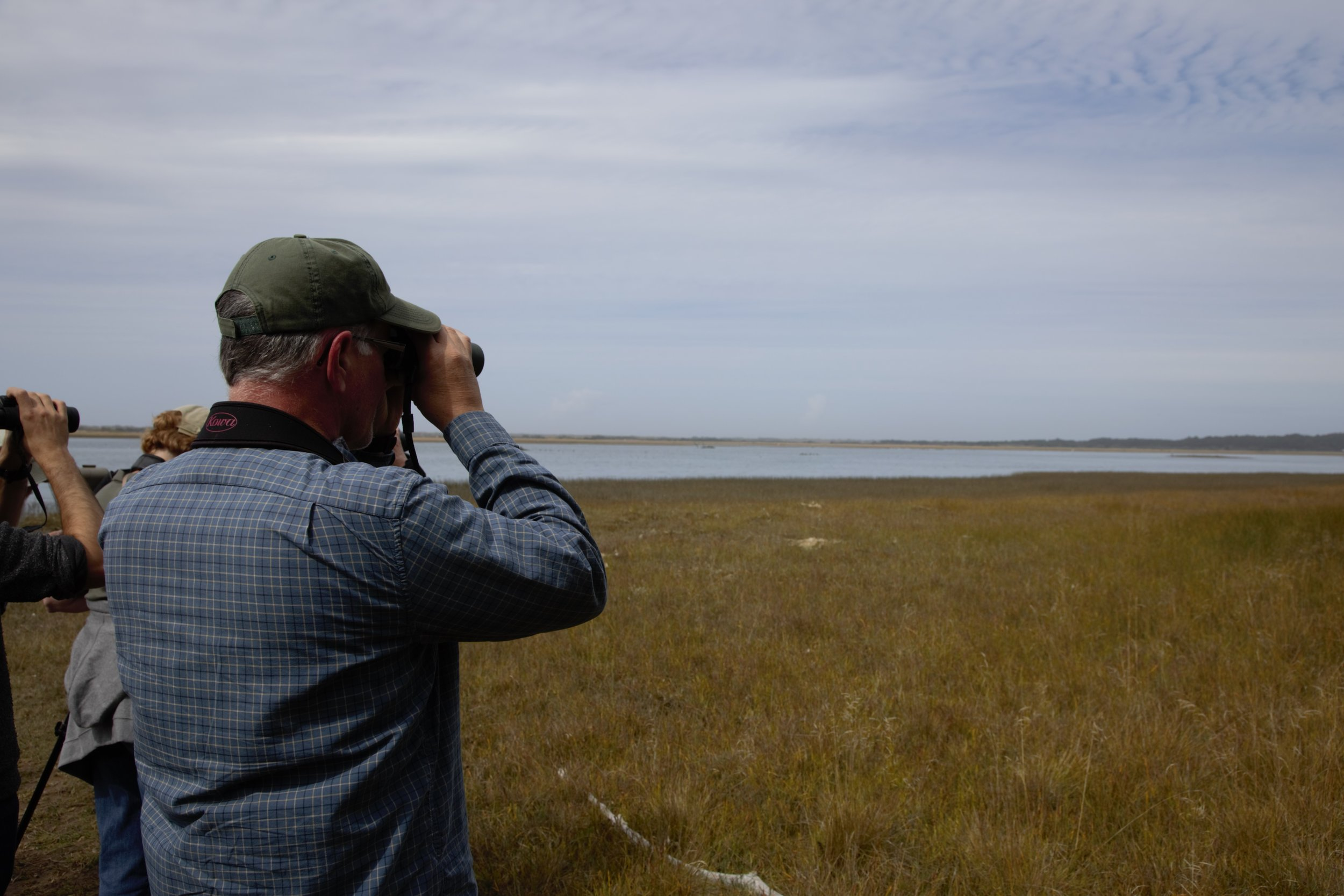 Presenter Tim Boyer spots a Peregrine Falcon in the distance at Bandon Marsh National Wildlife Refuge. Photo by Lila Bowen