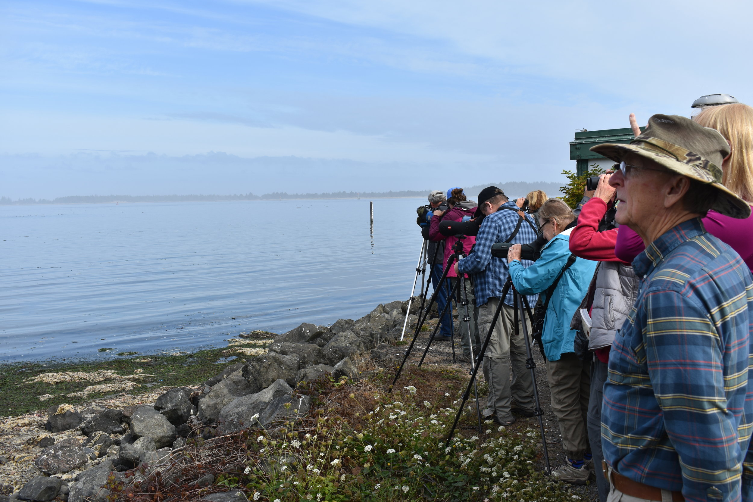 Birding at the South Jetty. Photo by Taylor Brooks