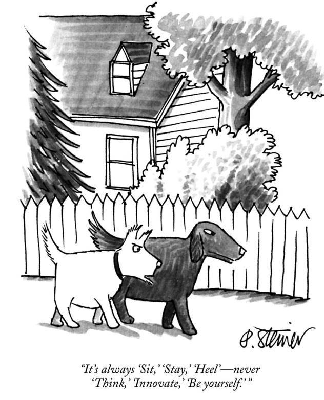 Dog Innovators!