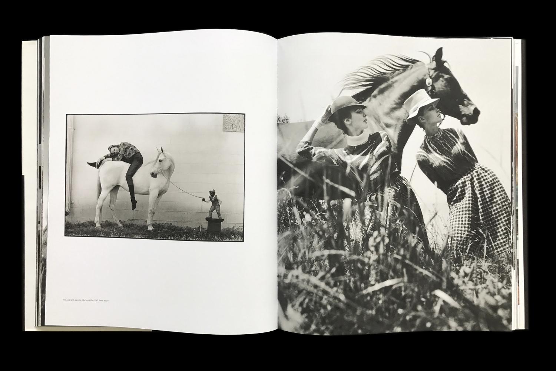 KK-Horse-8.jpg