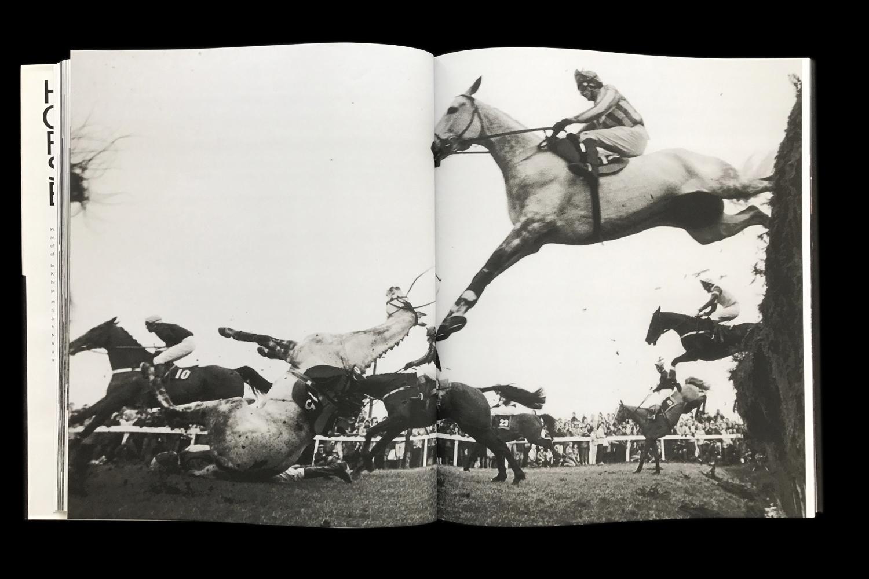 KK-Horse-9.jpg