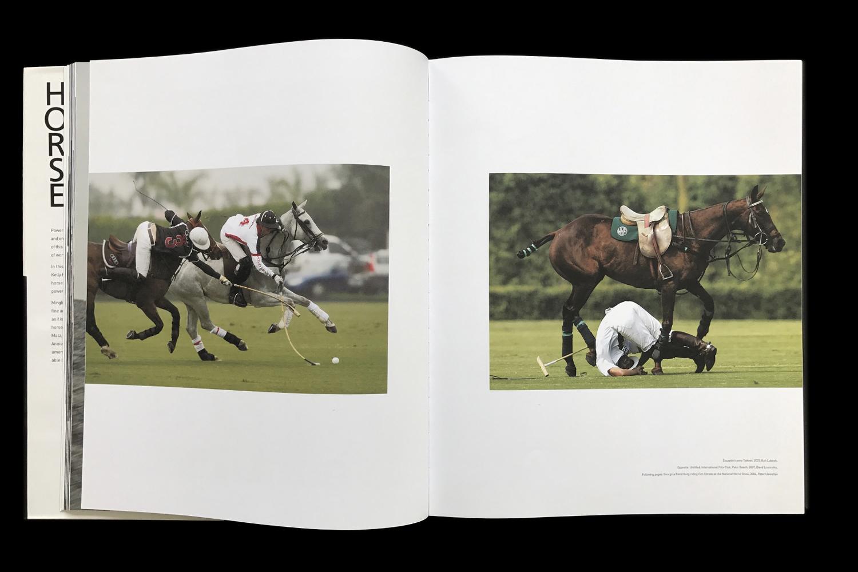 KK-Horse-12.jpg