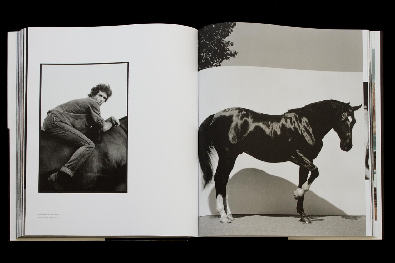 KK-Horse-14.jpg