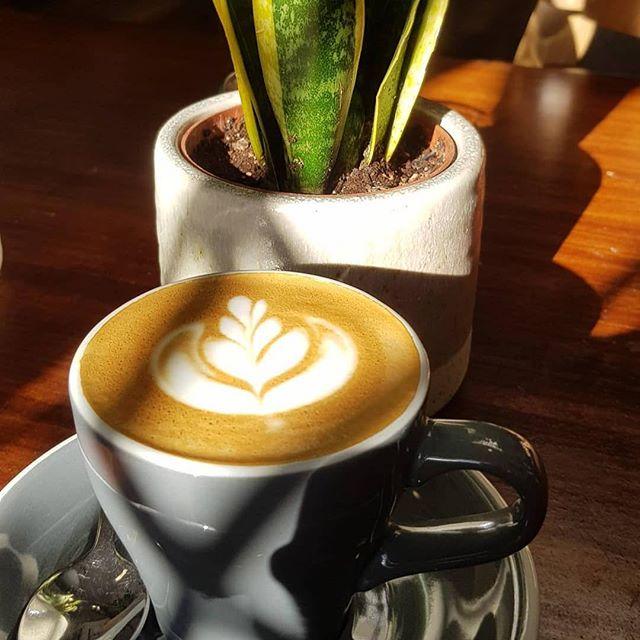 Great pic bloffee, hope you enjoyed! #swallowcoffeeshop #goldhawkroad #shebu #flatwhite #latteart #bloffee #sunshine