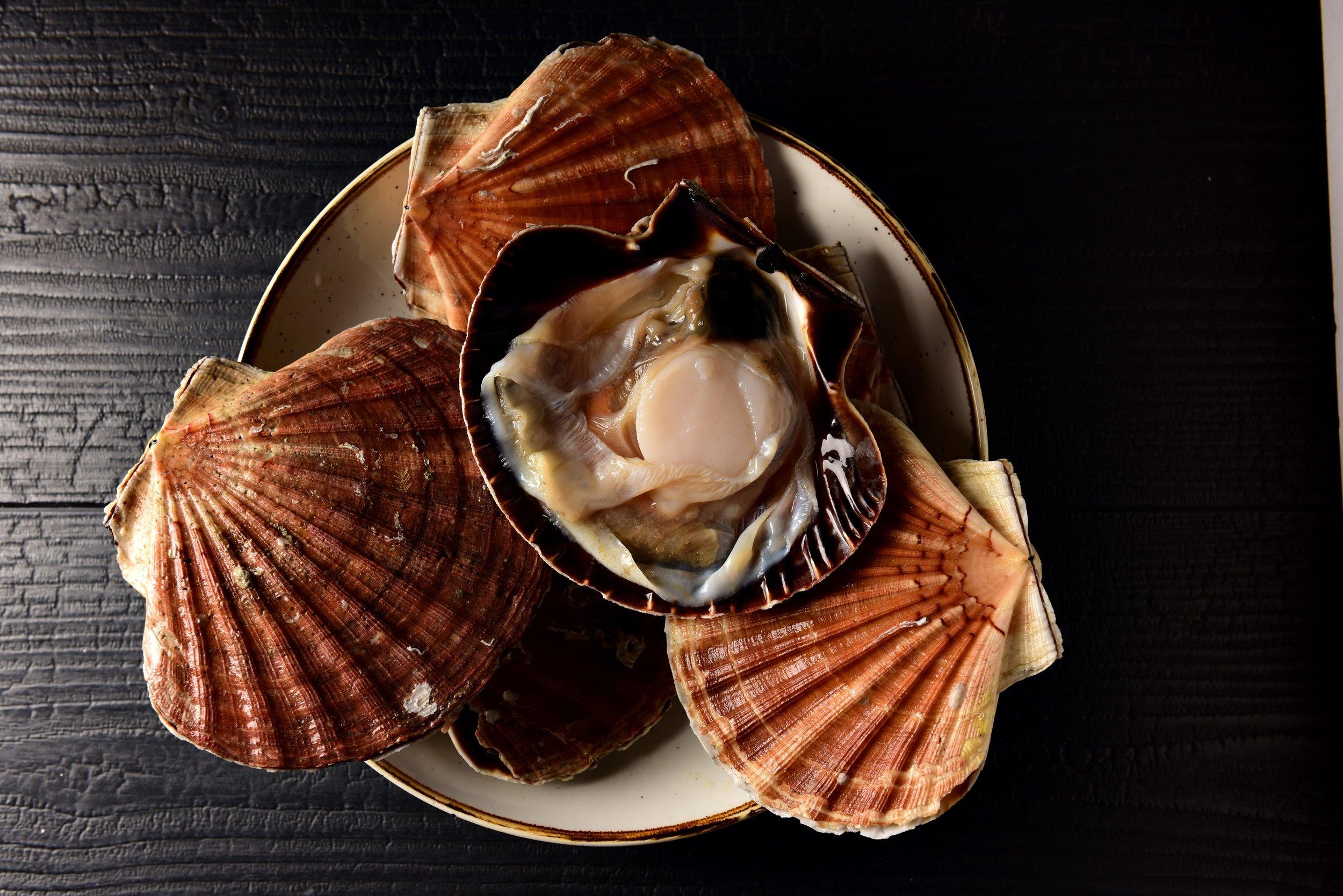 16 brasserie juste restaurant Dikkelvenne tablefever bart albrecht culinair fotograaf foodfotograaf.jpg