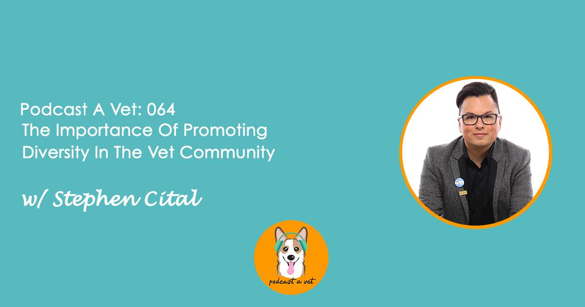 Podcast A Vet 64 Stephen Cital 3.jpg