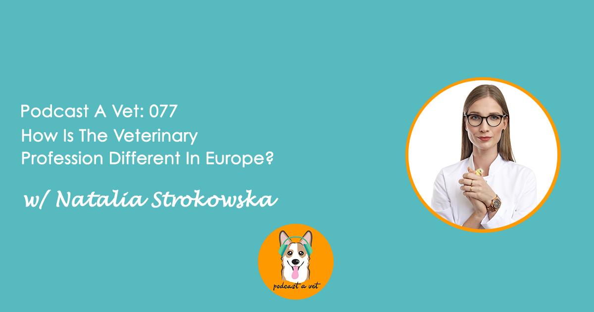 Podcast A Vet w/ Natalia Strokowska.jpg