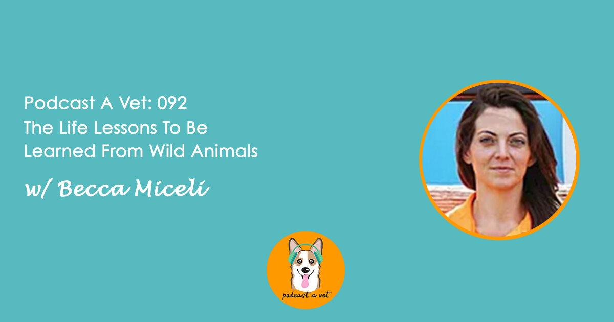 Podcast A Vet 092 Becca Miceli