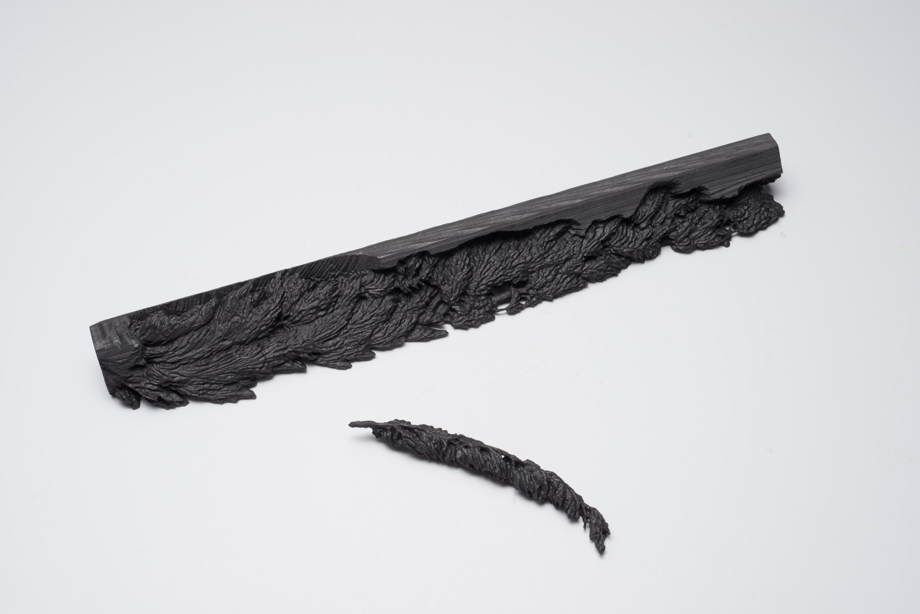 "Andréanne Godin,  Thuja occidentalis , 2015, extruded graphite, 10"" x 1"" x 1"" (25 x 2.5 x 2.5 cm)"