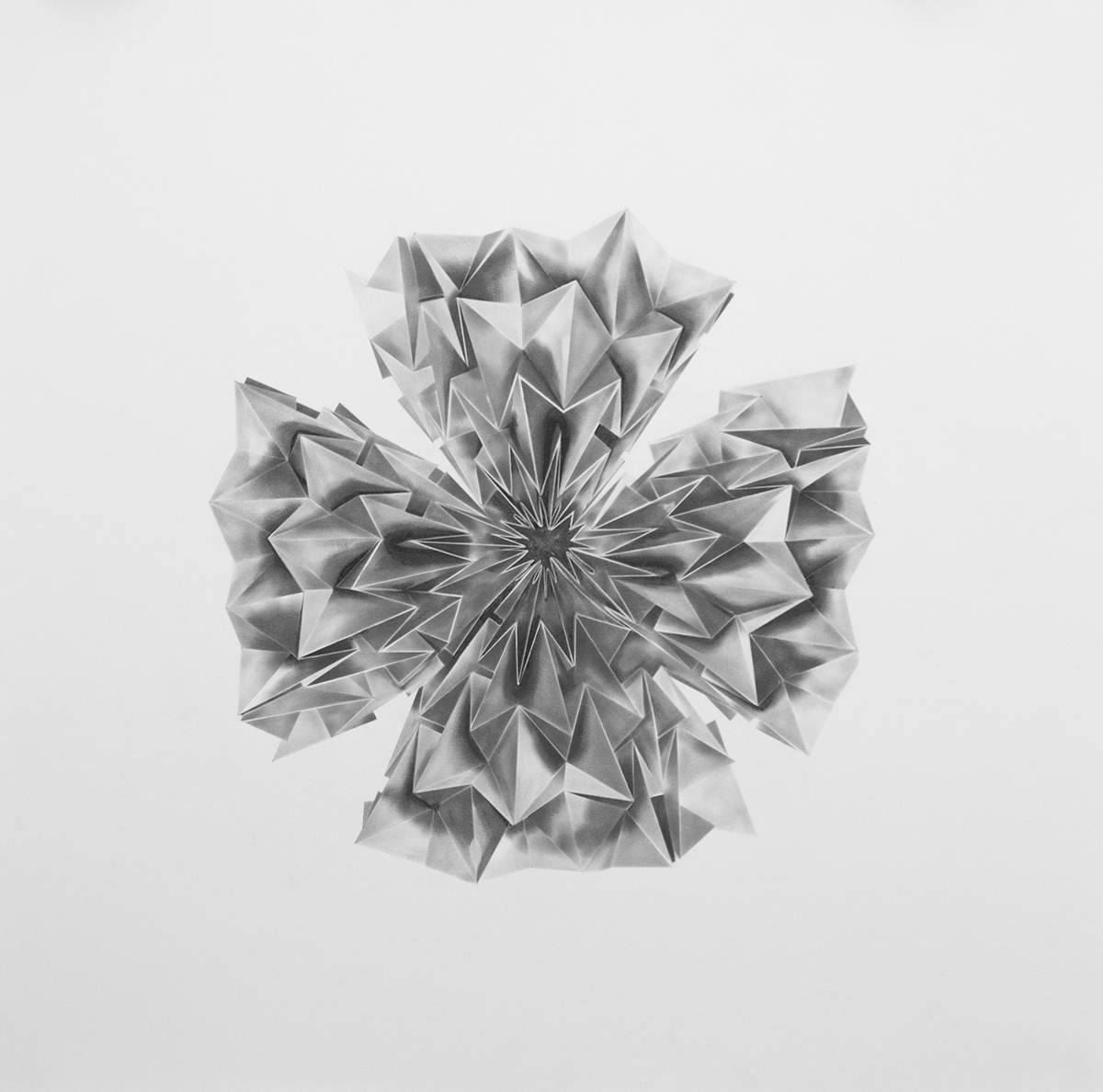 "Philippe Caron Lefebvre,  Ballard's Flora I,   2015, graphite on paper, 30"" x 30"" (76 x 76 cm)"