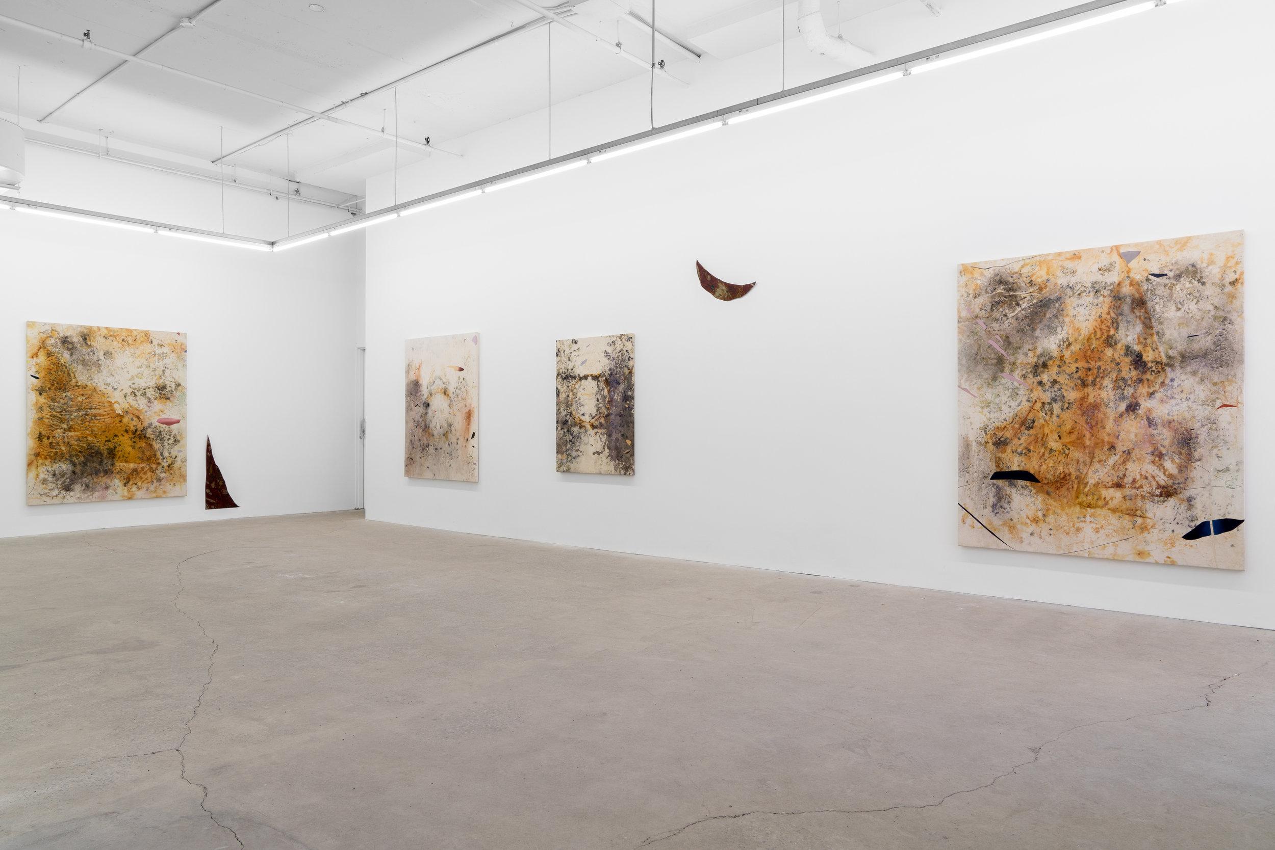 Gillian King,  Sediment , 2019, exhibition view, Galerie Nicolas Robert, photo : Jean-Michael Séminaro