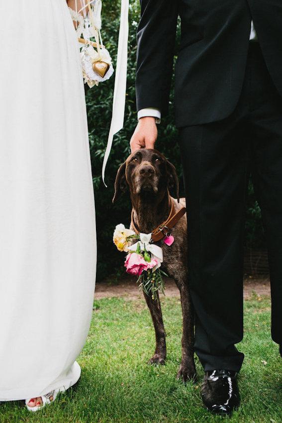 Trend #9 Kleine Feste_Bridal Dog_erinandtara.com.jpg