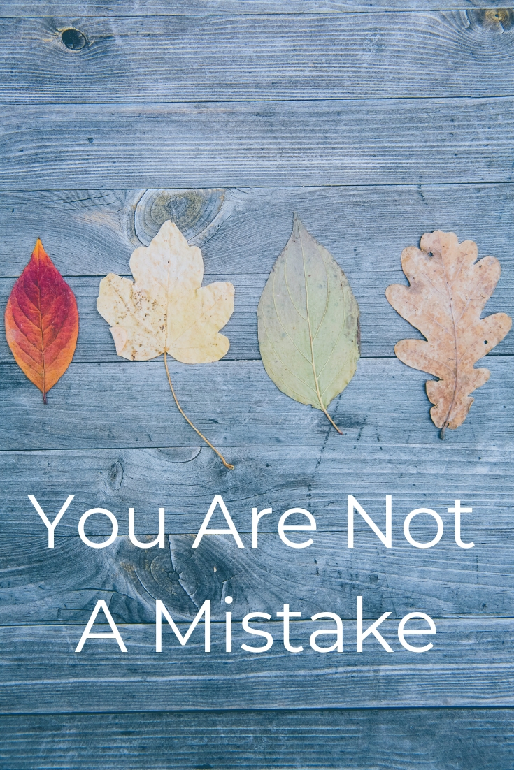 You Are Not A Mistake.jpg