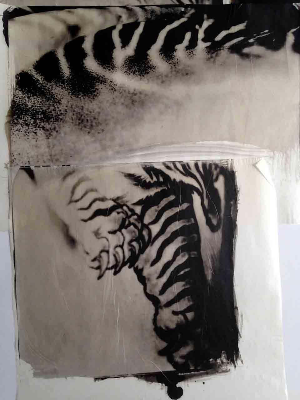 Tiger-Strikes-copy.jpg