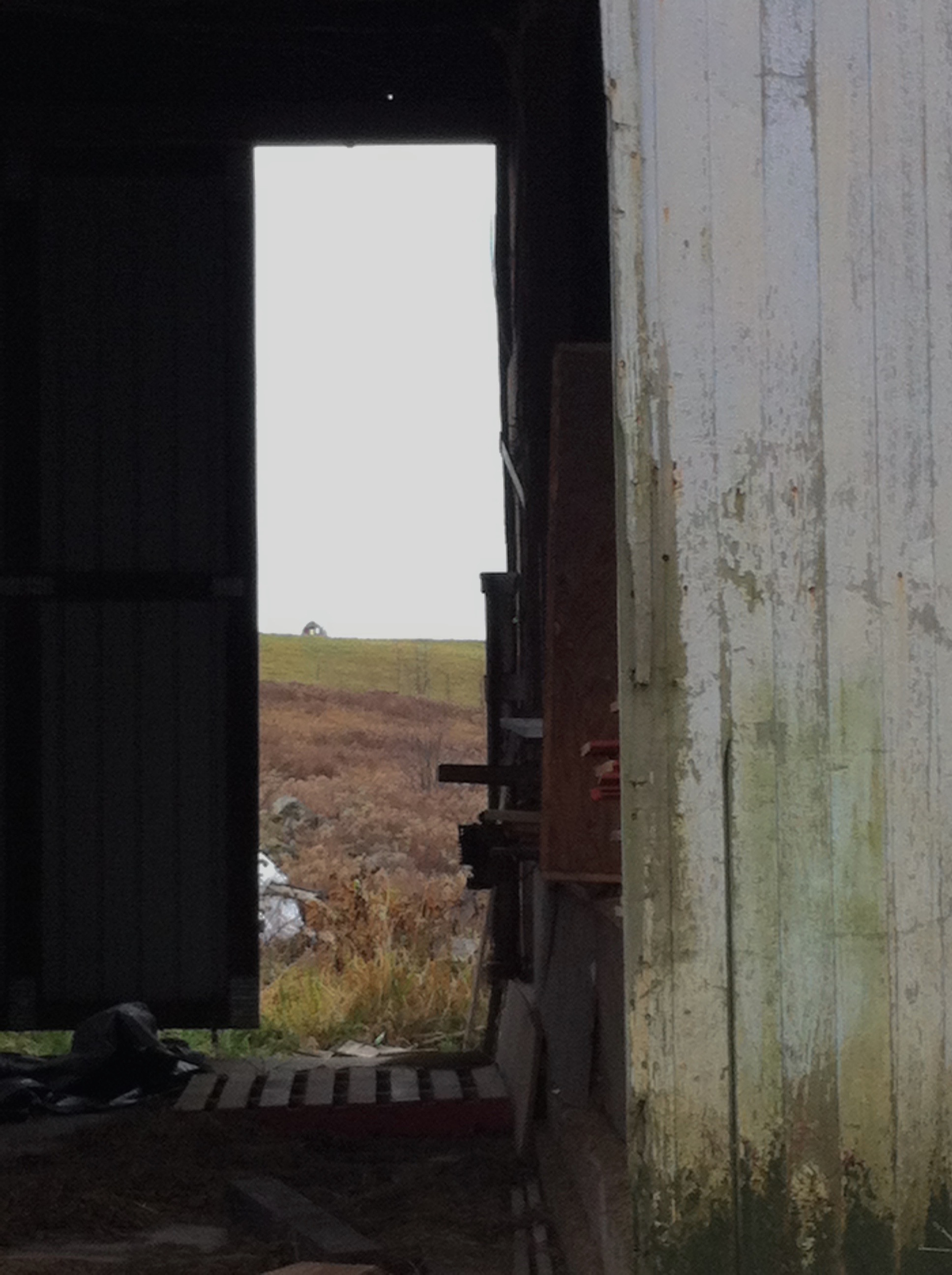 Pasture calling.jpg