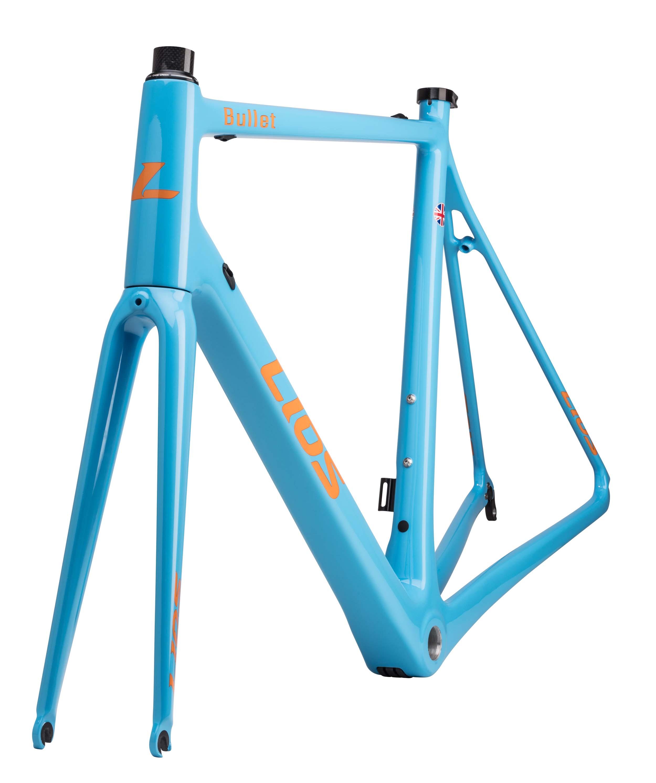 Custom bike painting by LIOS