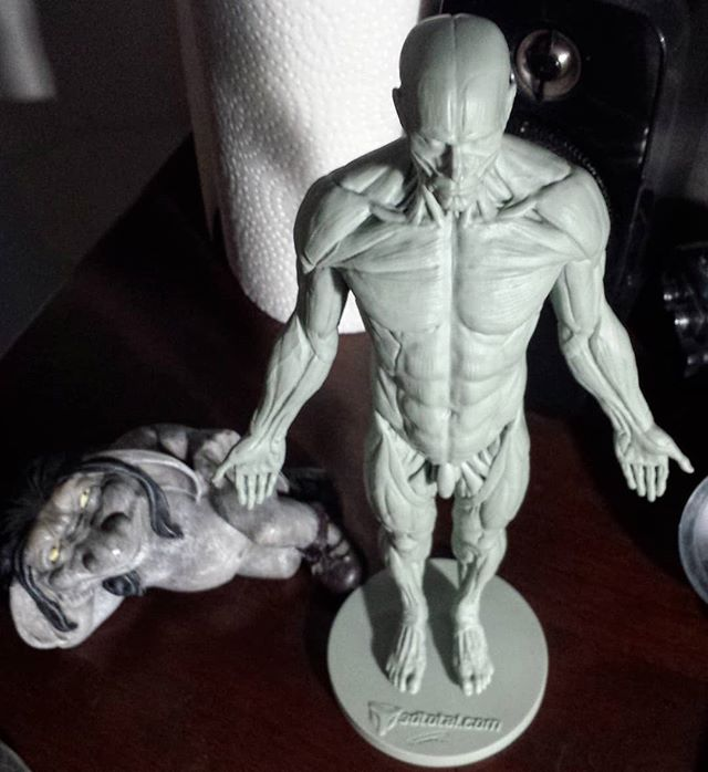 This écorché male figure created by @3dtotal has now a new home right next to the mighty troll that I received at my last birthday by my love @fairys_and_goblins  #figurine #anatomy #3dtotal #troll #écorché #malemodel #musclestudy #human #maleanatomy #skinless #drawdaily #drawingsketch #study #sketcheveryday #sketchbooks #sketch #artistsoninstagram #artistfrommontreal #figure #male #practice