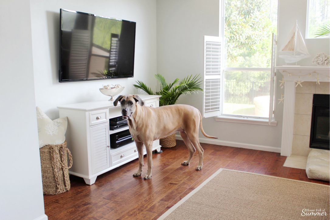 The best rugs for big dogs, and little ones, too! House Full of Summer blog coastal living dogs and decor durable rugs, coastal decor, family room, white console