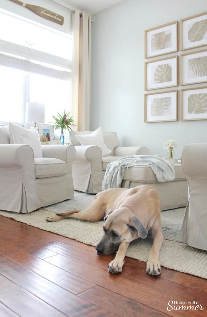 The best rugs for big dogs, and little ones, too! House Full of Summer blog coastal living dogs and decor durable rugs,