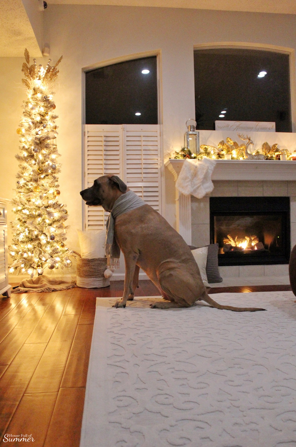 Cozy Christmas Nights by the Fire   white area rug, mantel decor, gold glam decor, pencil christmas tree, plantation shutters, Southern home charm, Coastal Christmas decor, Christmas in Florida, family room, living room, dog friendly, House Full of Summer