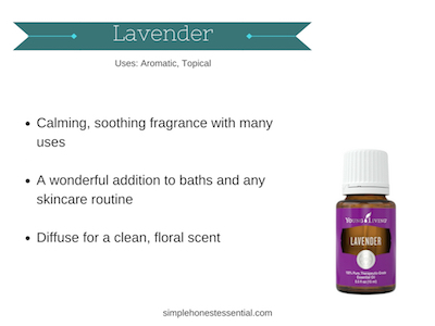 04 Lavender.jpg