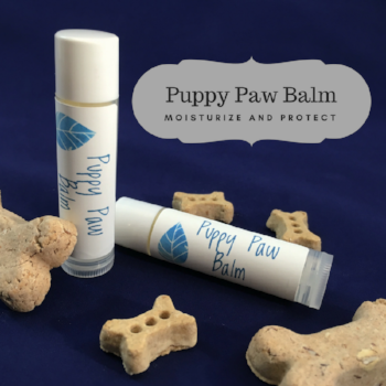 Moisturize and protect your furry friend's paws with this easy DIY recipe