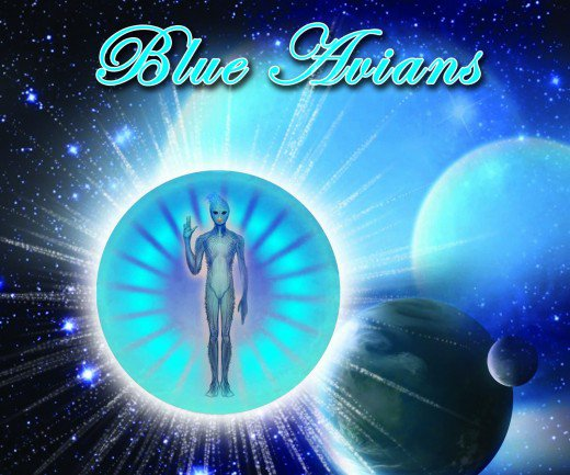 CLICK THE PIC TO LEARN ABOUT THE BLUE BIRDS.