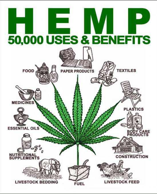 hemp.products.png