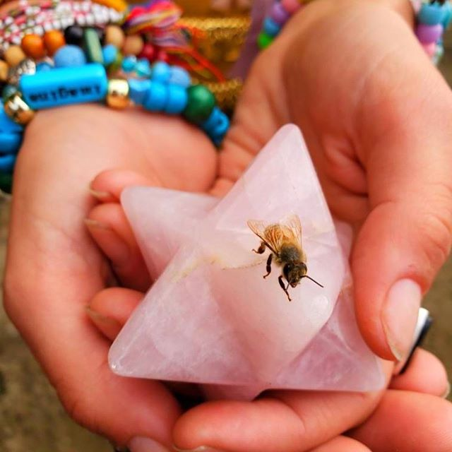 """Blessings of the Bee - Pt II . The Story Sweetens .   🐝   . After a transformative meditation led by my soul sistAr @iseeinwaves at @expansionfestival , with my heart truth reawakened to my sacred duty to #mamagaia, I made my way down to the river to pray. . As I walked through the forest, making offerings of tobacco as I went, I felt deep grounding and the sense of being so held & guided by spirit. . . With reverence I made my way into the river & welcomed the muddy sand between my toes as I felt the flow of water cleansing me. The song I was gifted by Spirit began to gently pour out of me as I danced with the flow of Gaia all around me: . """"Mother Earth I'm here for you. Mother Earth I serve you. Warrior, healer, protector and guide. I'm your child your servant by your side."""" . In my prayer, of movement, feeling, breath, and song, I felt at one with the earth & my ❤️ was so full of love, peace, & gratitude. . As I concluded my prayer, & came to stillness & reflection I noticed a vibrating spiral vortex making its way toward me in the river. It was a bee stuck in the water, desperately trying to get out! I immediately went to scoop her up, & she crawled on to my left pinky. . I became so in awe of this little bee, so blessed that I had an opportunity to serve such an important & magical creature. Looking at her beautiful form, I was filled with peace. As she rested on my finger to regain her strength, I felt her trust for me. I was honored. . . For hours my #soulfam & I were blessed by this bee. She received sound healing, reiki, & rose quartz merkaba charging, coconut water & so much love from us all. . Through laughter & heart & joy she revealed to us her name #goddessisis & helped my soul sis @thesacredmystica heal her phobia of bees. She brought us all together and deepened our bonds with one another, the earth, and the Divine Feminine unfolding. . The immense beauty & gift of this experience will always be with me. The perfect synchronicity of pledging to serve"""